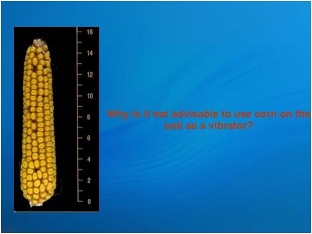 Cob corn joke vibrator